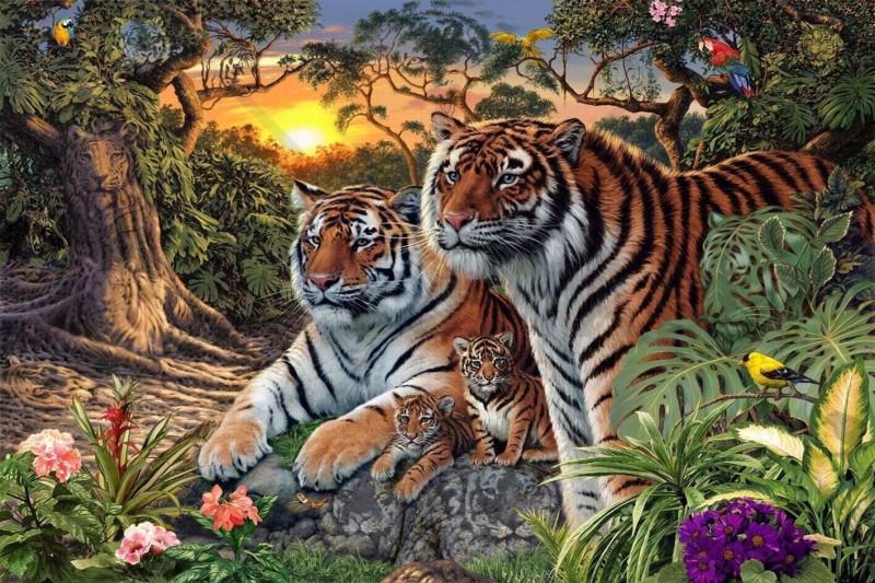 Сможете найти всех тигров на этом изображении?