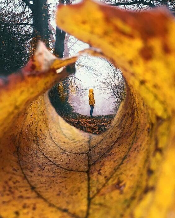 2. Осенняя тоска - что такое сезонная депрессия