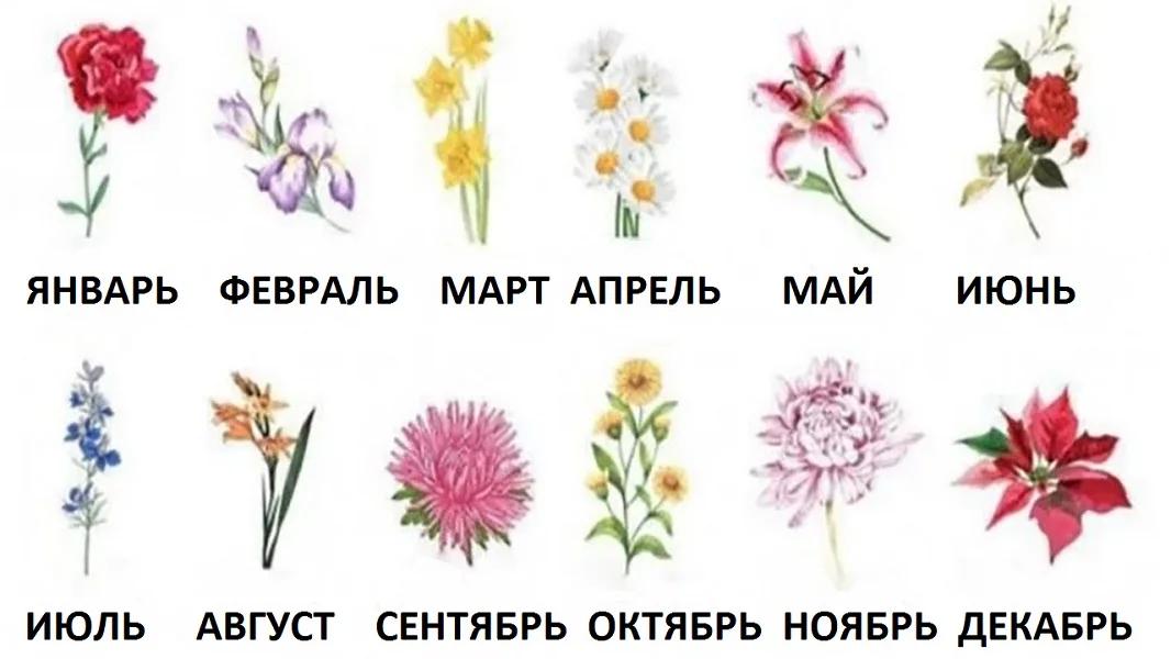 Выберите цветок месяца вашего рождения и откройте, каким человеком вы являетесь на самом деле