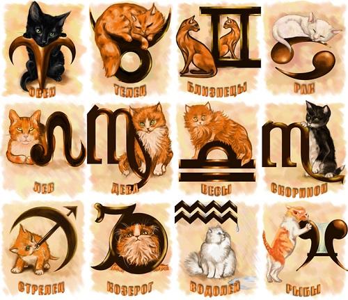 Каким кошачьим темпераментом обладаете вы, согласно вашему знаку зодиака?