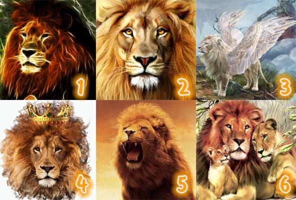 Тест: Выбранный вами лев покажет, каким должен быть ваш идеальный партнер