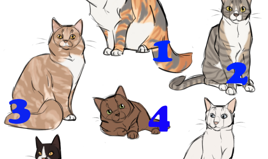 Тест: Выбирайте кошку на картинке и узнаете особенности вашего характера