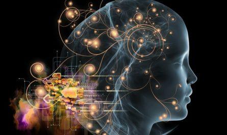 Узнайте свой уровень интеллекта с помощью данного теста